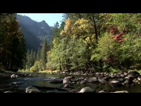 Yosemite Music Video - National Park DVD WS