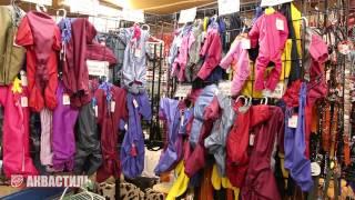 Одежда для питомцев. Зоотовары