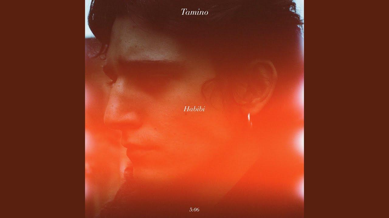 Tamino - Habibi - Lyrics