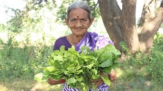 How to cook spinach curry By My Grandma || Myna Street Food