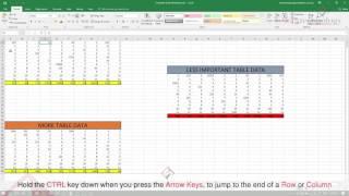 Microsoft Excel 5 Time Saving Tips