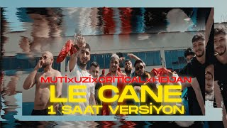 MUTİ - LE CANE feat. UZİ x CRİTİCAL x HEİJAN 1 SAA