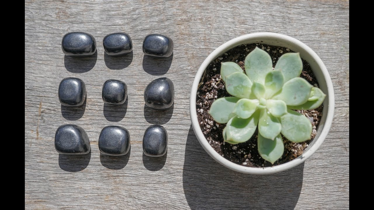 The Healing Powers of Shungite with Crystal Expert Heather Askinosie