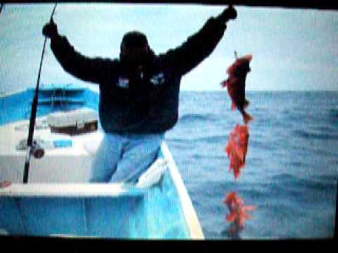 Pesca San Quintin Mayo 2009