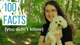 100 FACTS YOU DIDN'T KNOW ABOUT US   Get to Know Julia & Rosco the Maltipoo!