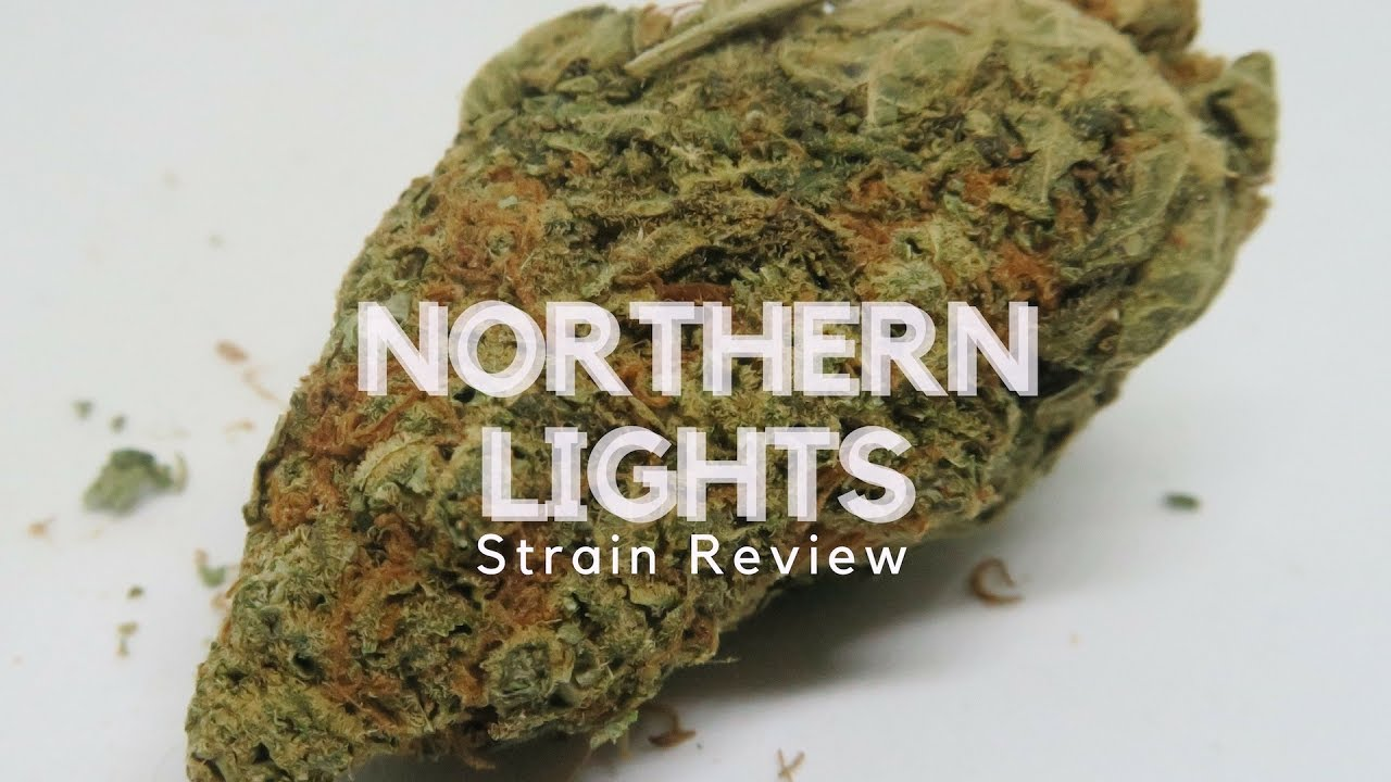 Northern Lights Weed Strain Review - ISMOKE
