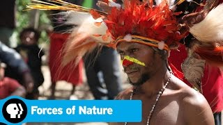 FORCES OF NATURE | Next on Episode 3 | PBS