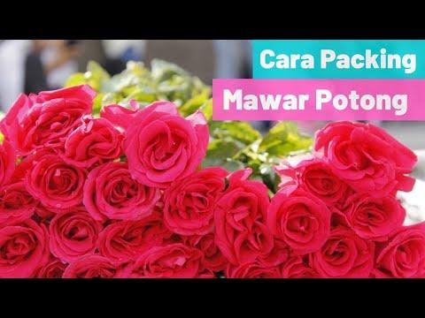 Cara Pengemasan Bunga Mawar