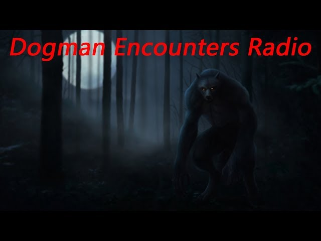 That Was a Werewolf! (Dogman Encounters Episode 190)