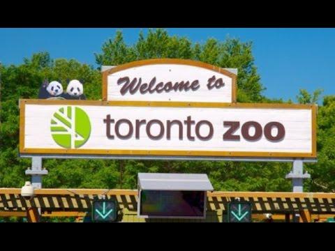 Vlog: Trip to the Toronto Zoo | ALifeLearned