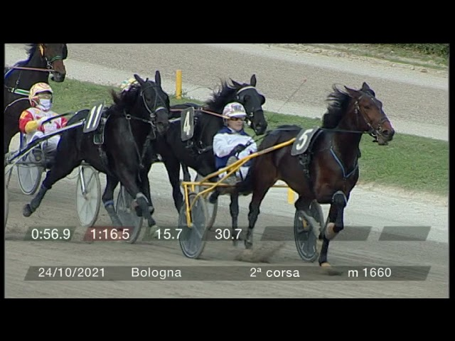 2021 10 24   Corsa 2   Metri 1660   Premio L.c. Charter 11/4/1961