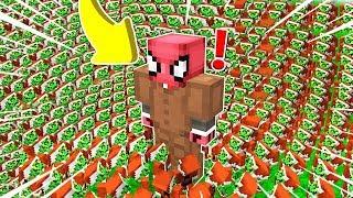 FAKİR VS 100.000 GRİNÇ KIYAMETİ! 😱 - Minecraft