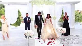 Шикарное свадебное оформление в Харькове
