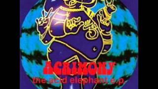 Acrimony - Spaced Cat #7
