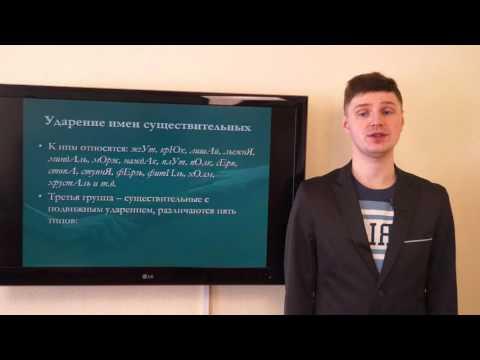 Белых И.Н. Орфоэпические нормы современного русского литературного языка