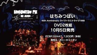 10/5発売DVD「はちみつぱい 45th Anniversaryライヴ+ラストライヴ1988...