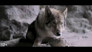 Альфа (фильм, 2018)-Первый трейлер