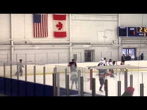 Stamford Sharks Pee Wee A1 Icebreaker Springfield, MA