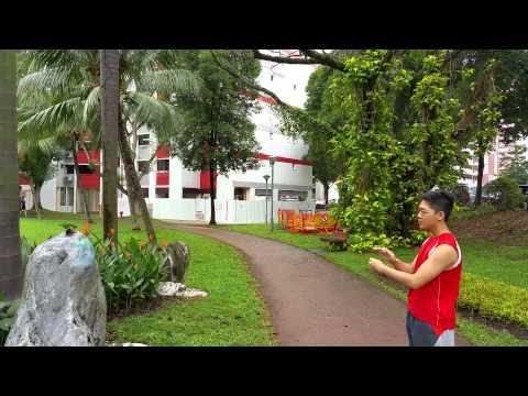 2nd outdoor recall training