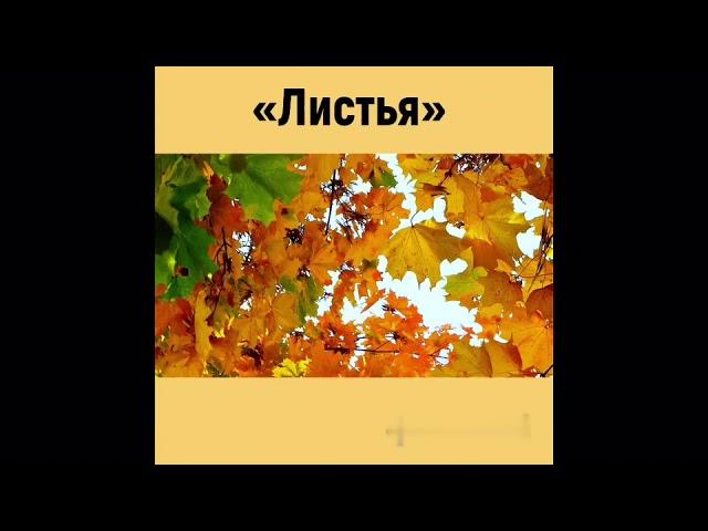 Изображение предпросмотра прочтения – ИванБерёзкин читает произведение «Листья (Пусть сосны иели…)» Ф.И.Тютчева