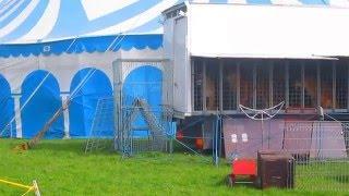 Pyskowice - 13.04.2015 - Zwierzęta cyrku Arena