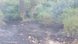Incendio in Lama Matitani 28 giugno 2017