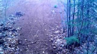 KTM 250 hillclimb