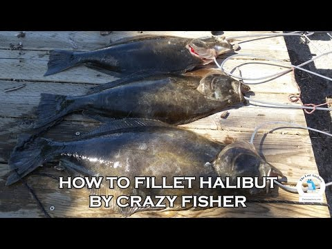 How to fillet a Halibut with Crazy Fisher