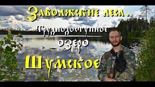 Заволжские леса. Поход на труднодоступное озеро Шумское (Full HD)