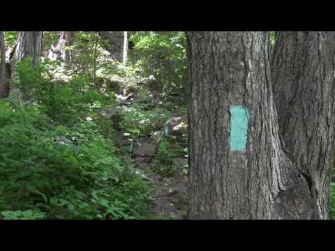 Hiking In Your Forests Connecticut Forest & Park Association