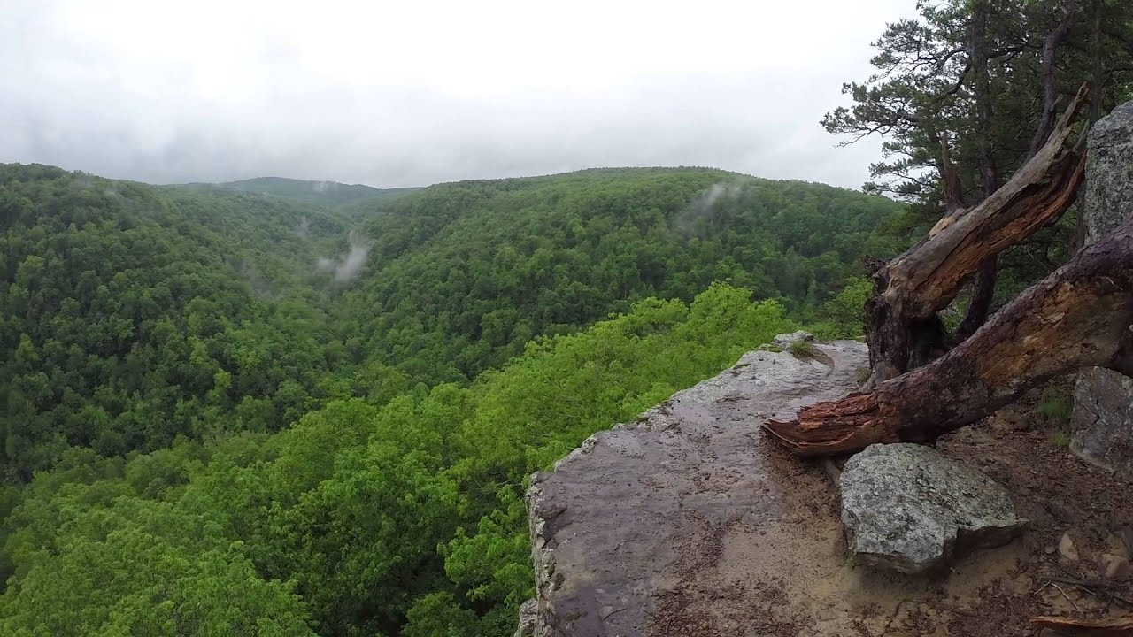 Image result for Whitaker Point Trail