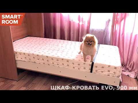 Шкаф-кровать ул.Вокзальная, Красноярск