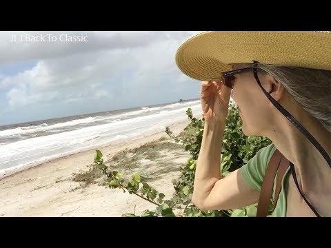 Vlog--Personal Footage, Hurricane Irma 2017, Naples, FL/ Janis Lyn Johnson / JLJ Back To Classic