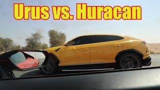 Urus DESTORYS Rental Lamborghini Huracan!