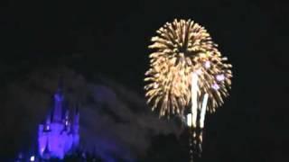 New Years Day 2010-2011 Fireworks at Magic Kingdom-Walt Disney World