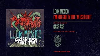 Watch Look Mexico Im Not Guilty But Im Used To It video