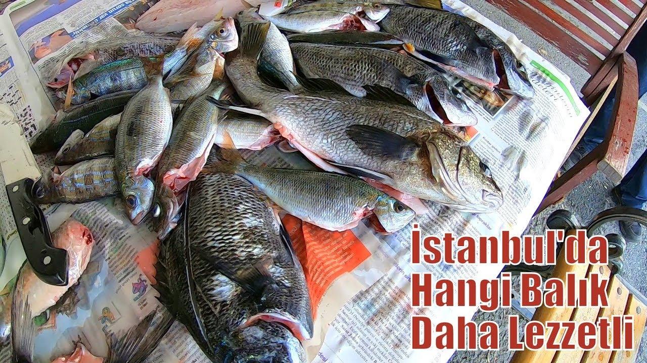 İstanbul'da Yakaladığımız Balıkları Limanda Pişirdik / Hangisi Daha Lezzetli?