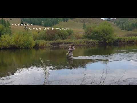 Mongolia TAIMEN ON 6lb TIPPET! And 30 Years Old Bob Church 5wt Rod