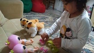 Oyuncak Bebek Bakma Videosu. Ayşe Ebrar Oyuncak Bebekleri Giydiriyor Kediciklerle Oynuyor.