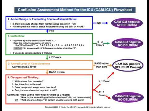 Cam-icu Worksheet Related Keywords - Cam-icu Worksheet Long Tail ...
