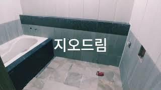 통영거제화장실럭셔리타일  고르기~~ 지오드림인테리어