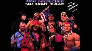 WWF Wrestlemania_ (Album 1993) The Man In Black