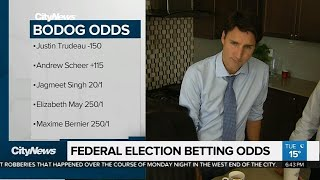 Federal political betting lines wirtshaus im spessart bettingen foundation