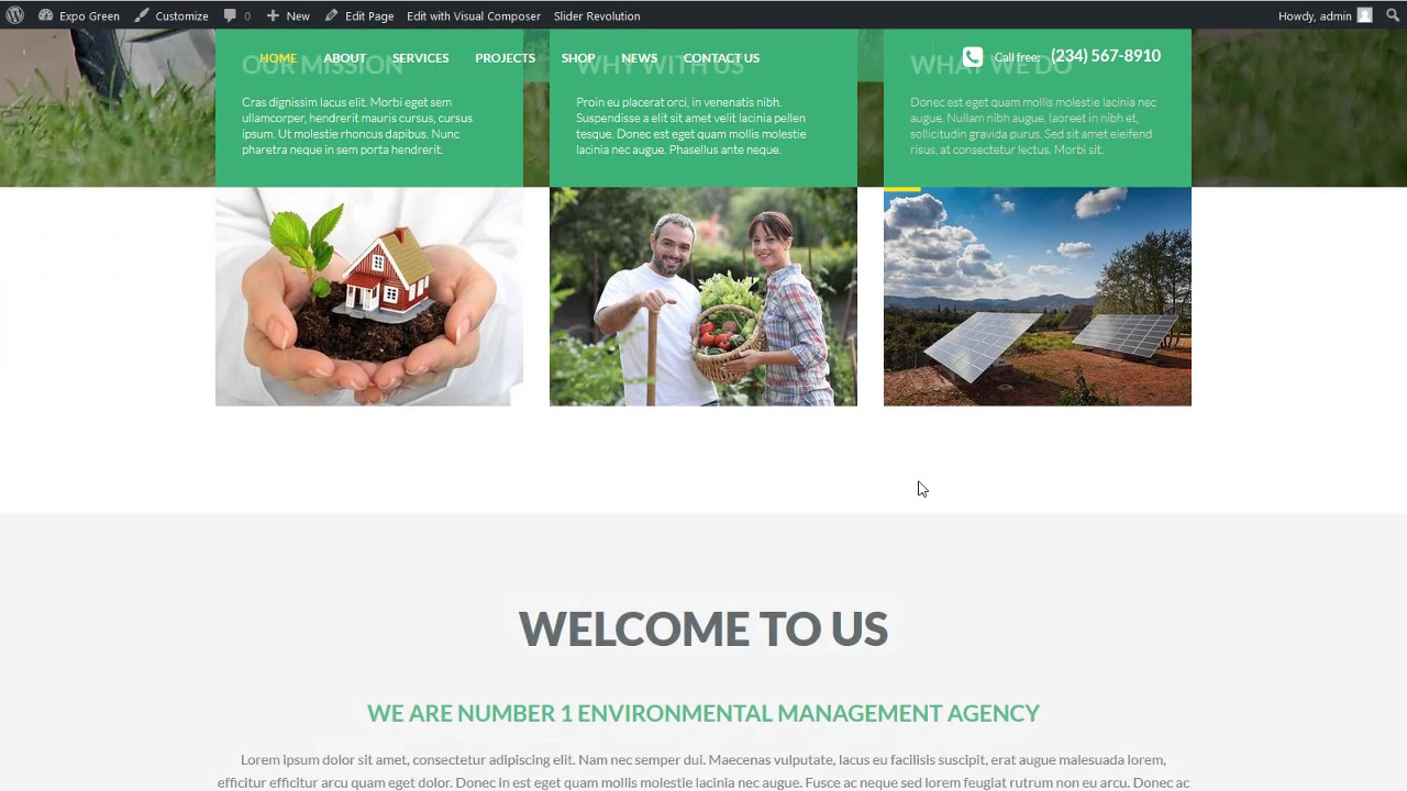 Business Wordpress Theme - MegaWP Expo Green