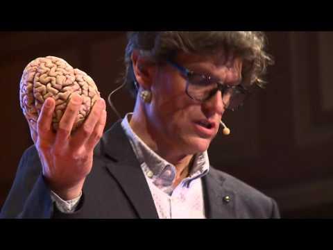 Brain concussion  Shake it and you break it  Steven Laureys  TEDxLiège