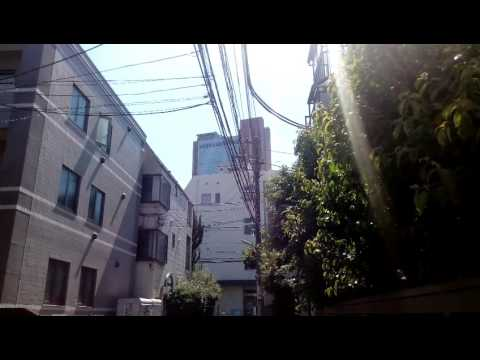 Electric cable Sangenjyaya Tokyo Japan