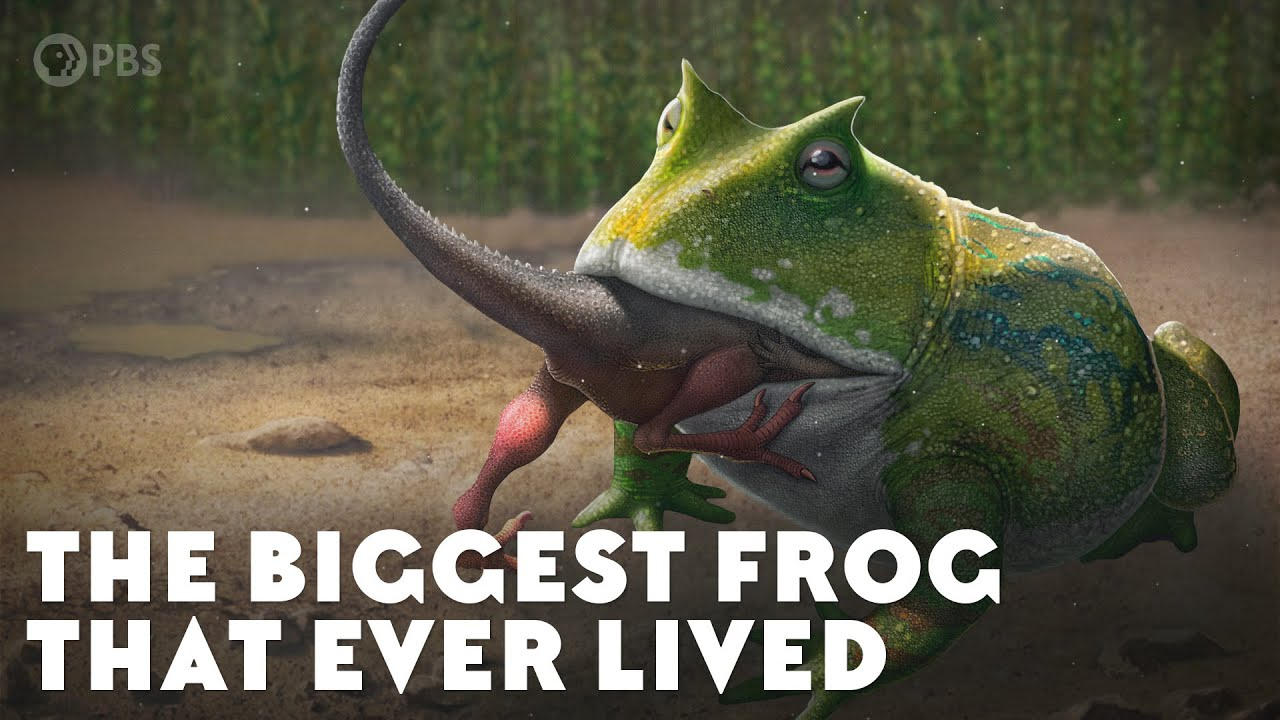 The Biggest Frog that Ever Lived