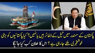 The International Rystad Energy Gave Report About Oil and Gas Discovery in Pakistan  news live