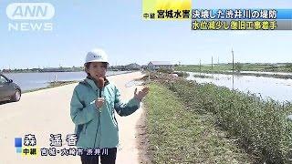 堤防が決壊した宮城県大崎市の渋井川は水位が減少し、まもなく堤防の復...