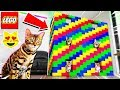 WORLD'S BIGGEST LEGO MANSION For CATS! (GIANT LEGO CAT HOUSE)